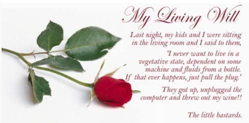 ~~~~LivingWill1