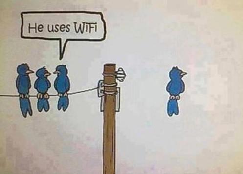 !!!!!Wifi1